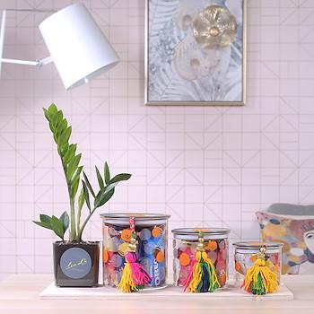 Jar Collection