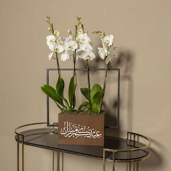 Eid Box (Small)