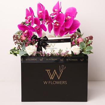 Purple Orchid Mix Flowers