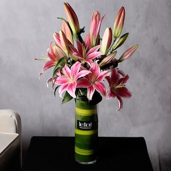 Be Bloom I