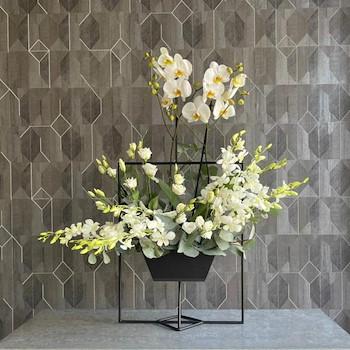 Elegant Orchid IX