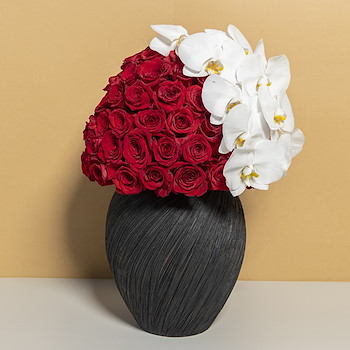 Victorina Red Roses