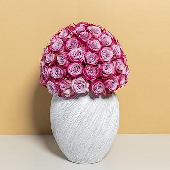 Victorina Violet Roses 2
