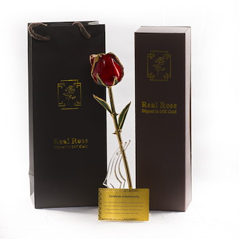 Gold Plated Red Tulip