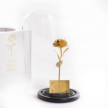 Gold Plated Rose 6