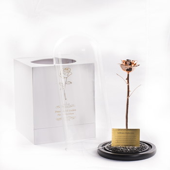 Gold Plated Rose 7