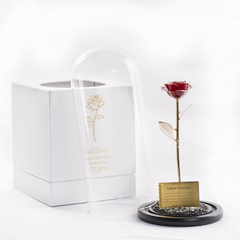 Red Plated Rose Dome