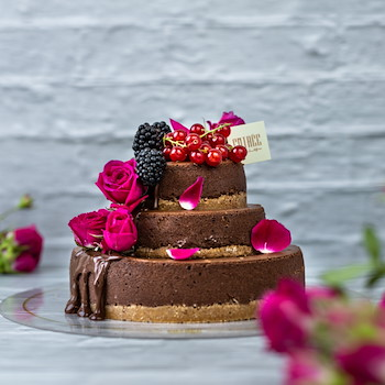 Mini Choco Cheesecake