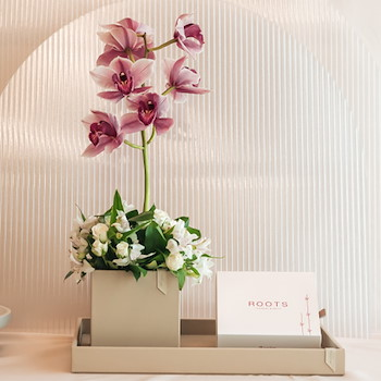 Mix Orchid And Chocolate