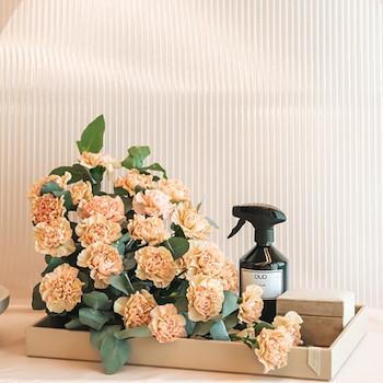 Carnation Tray