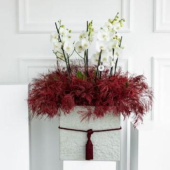 Luxury Bouquet