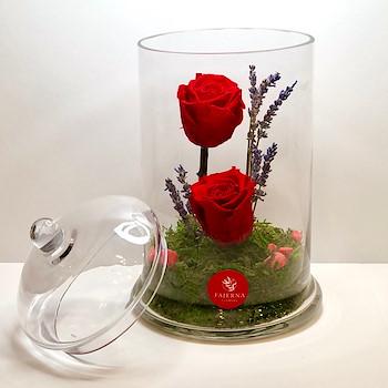 Red Immortal Love