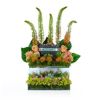 Floret Special 1
