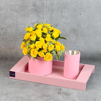 Rectangle Pink 14