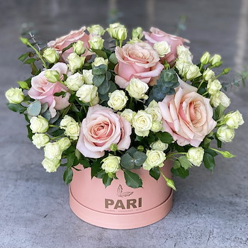 Signature Pink Rosa