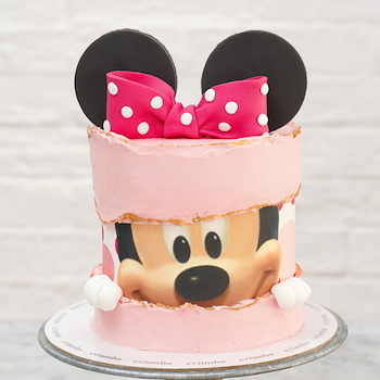 Minniee Mouse Cake 2