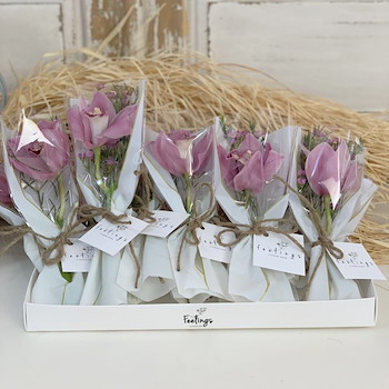 Orchids Giveaways