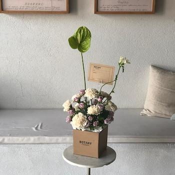 Carnation Box 2