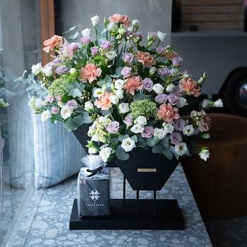 Carnation Double Glory