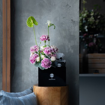 Carnation Choco Box I