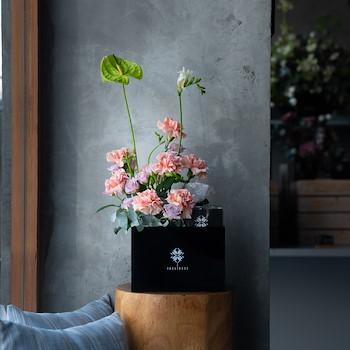 Carnation Choco Box II