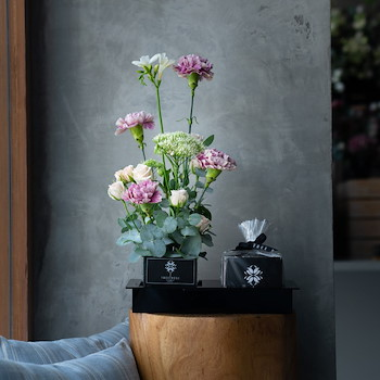 Two Selections Carnation I
