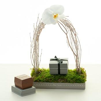 Jewelry Box Garden