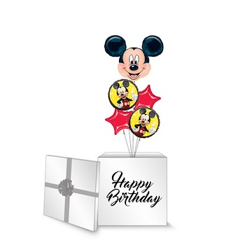 Mickey Mouse Surprise