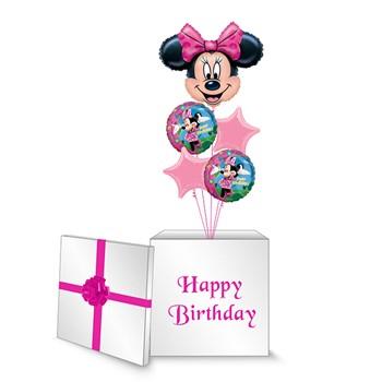 Minnie Mouse Surprise