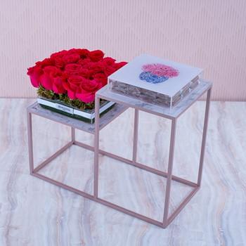 Fuchsia Rose Cloud