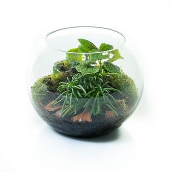 25% OFF - Lila Garden