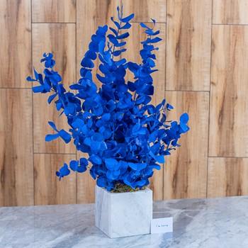 25% OFF - Blue Ivy 9