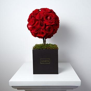 Love Tree Red M