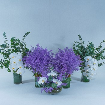 Purple Set Special