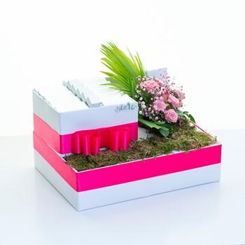 Fuchsia Box