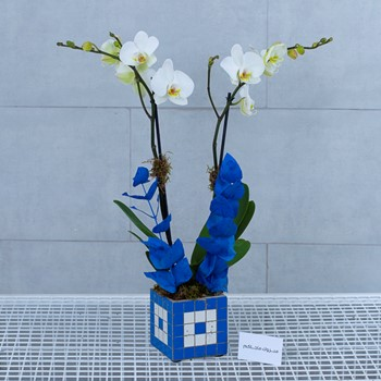 25% OFF - Blue Tiles III