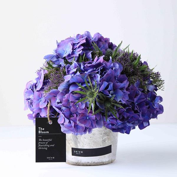 Seiva Flowers