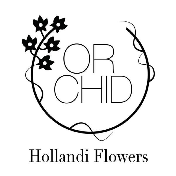 Orchid Hollandi