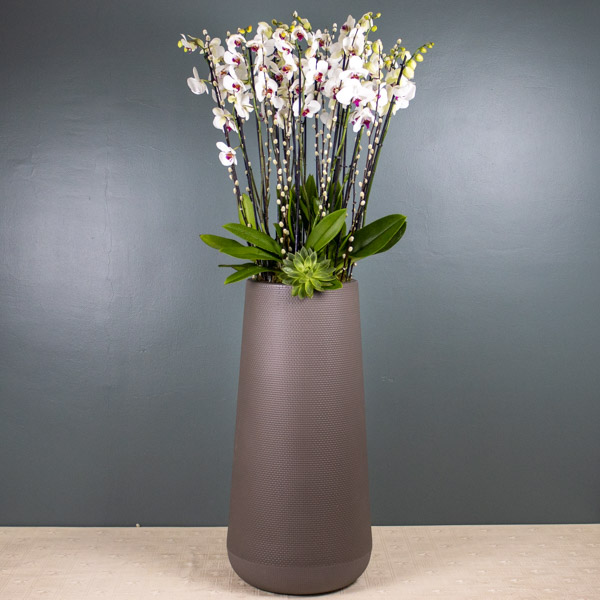 BK Flowers